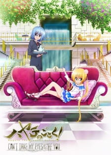 Hayate the Combat Butler: Can't Take My Eyes Off You (Dub)
